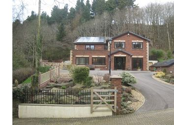 Thumbnail 4 bed detached house for sale in Valley View, Ebbw Vale