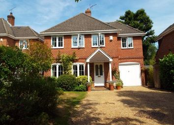 Thumbnail 4 bed detached house for sale in Colden Common, Winchester, Hampshire