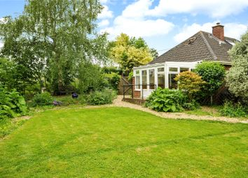 Thumbnail 4 bed detached bungalow for sale in Common Hill, Steeple Ashton, Wiltshire