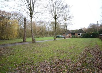 Thumbnail 4 bed detached bungalow for sale in Hollybush Lane, Aldershot, Hampshire