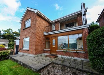Thumbnail 3 bed detached house for sale in Lancedean Road, Belfast