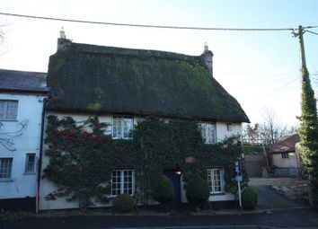 Thumbnail 3 bed cottage for sale in Milborne St Andrew, Blandford Forum