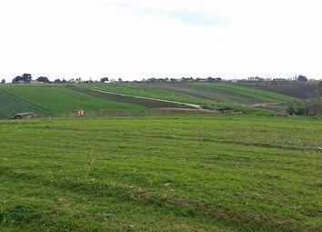 Thumbnail Land for sale in Strada Provinciale 40, Castelvetrano, Trapani, Sicily, Italy