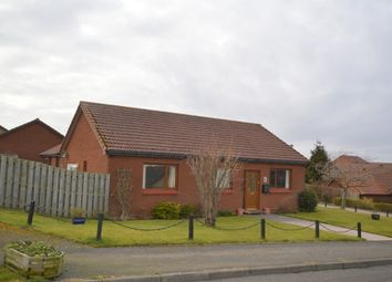 Thumbnail 4 bed detached bungalow for sale in Goldstone, Tweedmouth, Berwick Upon Tweed, Northumberland
