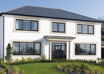 Thumbnail 5 bed detached house for sale in Willowbank, Castleward Green, Douglas