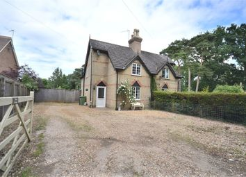 Thumbnail 3 bed cottage for sale in Chilver House Lane, Bawsey, King's Lynn