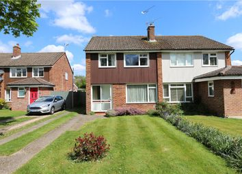 Thumbnail 3 bed property for sale in Maple Close, Romsey, Hampshire