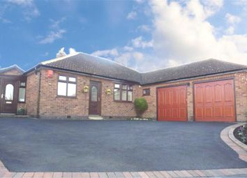 Thumbnail 4 bedroom detached bungalow for sale in Duport Road, Burbage, Hinckley