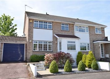 Thumbnail 3 bed semi-detached house for sale in Arne Grove, Orpington, Kent