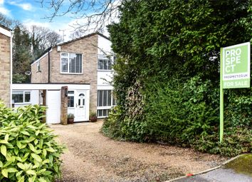 Thumbnail 4 bed link-detached house for sale in Holly Hedge Road, Frimley, Camberley, Surrey