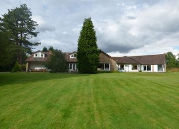 Thumbnail 6 bed bungalow to rent in Holt House, Davenport Ln, Mobb