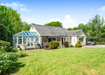 Thumbnail 5 bed bungalow for sale in Axe Valley Close, Axminster