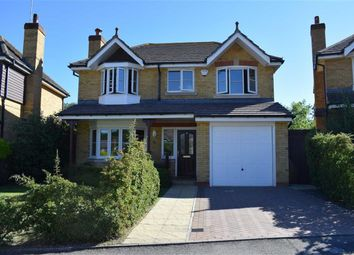 Thumbnail 4 bedroom detached house for sale in Wittersham Rise, St Leonards-On-Sea, East Sussex