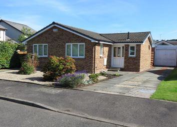 Thumbnail 3 bed bungalow to rent in Dark Brig Road, Crossford, Carluke