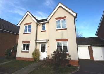 Thumbnail 4 bed detached house to rent in Caddow Road, Norwich