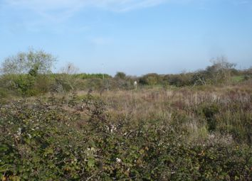 Thumbnail Land for sale in Priory Road, Eastbourne