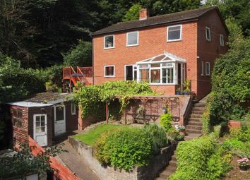 Thumbnail 3 bed detached house for sale in Brook View, Mochdre Lane, Stepaside, Newtown, Powys