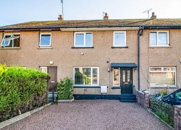 Thumbnail 3 bed property to rent in Huntly Place, Dundee