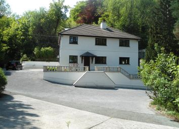 Thumbnail 5 bed property for sale in Talley, Llandeilo