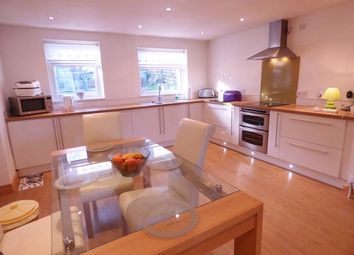 Thumbnail 4 bed detached bungalow for sale in Back Lane, Clayton-Le-Woods, Nr Chorley