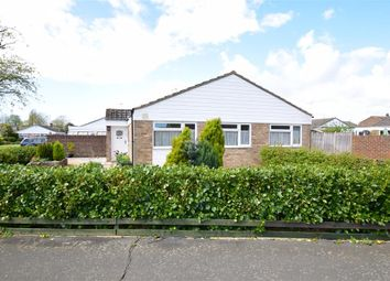 Thumbnail 3 bed detached bungalow for sale in Short Furlong, Littlehampton, West Sussex