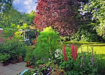 Thumbnail 3 bed detached house for sale in Ash Tree Drive, West Kingsdown, Sevenoaks, Kent