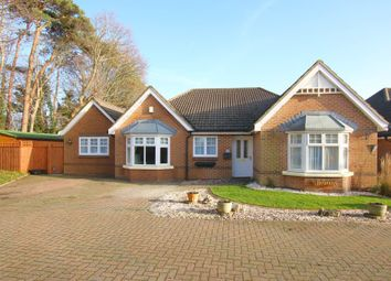 Thumbnail 5 bed detached bungalow for sale in Paddock Gardens, Lymington, Hampshire