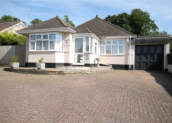 Thumbnail 2 bed detached bungalow to rent in Great Tattenhams, Epsom