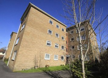 Thumbnail 2 bed flat to rent in Elm Grove Road, Salisbury