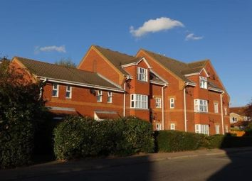 Thumbnail 1 bed flat to rent in Holly Court, Langdon Hills, Basildon