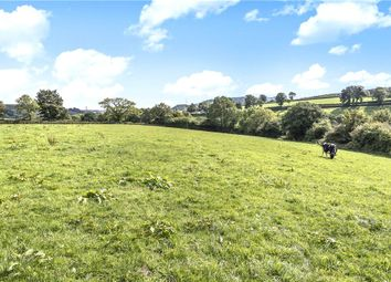 Thumbnail Land for sale in Wilmington, Honiton, Devon
