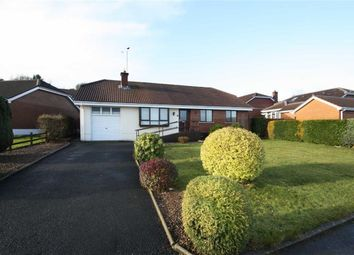 Thumbnail 3 bed detached bungalow for sale in Clanwilliams Court, Ballynahinch