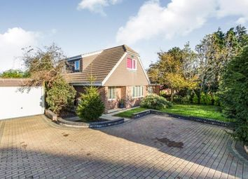 Thumbnail 4 bed bungalow for sale in Widley, Waterlooville, Hampshire