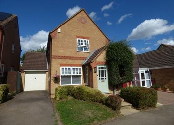 Thumbnail 3 bed detached house for sale in Hibiscus Close, Abington Vale, Northampton, Northamptonshire