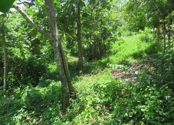 Thumbnail Land for sale in Little London, Westmoreland, Jamaica