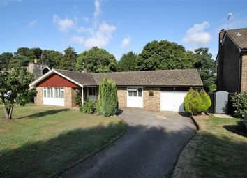 Thumbnail 3 bed detached bungalow for sale in Chiltley Way, Liphook, Hampshire