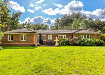 Thumbnail 4 bed bungalow for sale in Water Lane, South Godstone, Godstone, Surrey