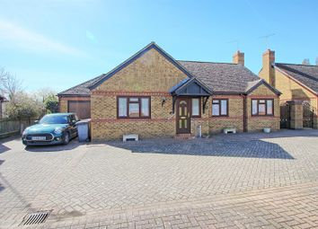 Thumbnail 4 bed detached bungalow to rent in Mapleleaf Close, Stanstead Abbotts, Ware
