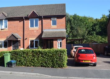 3 bed semi-detached house to rent in Gardenia Drive, Tiverton, Devon EX16