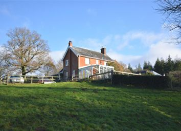 Thumbnail 4 bed detached house for sale in Minstead, Lyndhurst, Hampshire