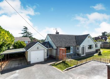Thumbnail 5 bedroom bungalow for sale in Uplands Close, West Moors, Ferndown