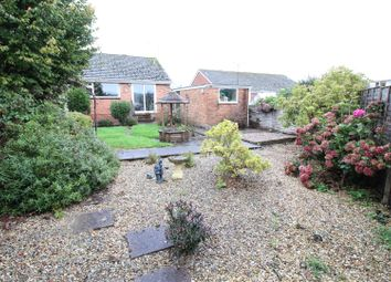 Thumbnail 2 bed semi-detached bungalow to rent in Isabella Road, Tiverton