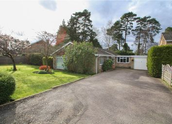 Thumbnail 5 bed detached house for sale in Copped Hall Drive, Camberley, Surrey
