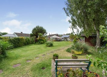 Thumbnail 2 bed detached bungalow for sale in Walnut Grove, Watton, Thetford