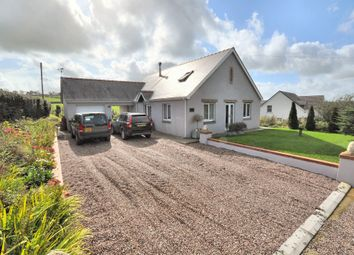 Thumbnail 3 bed detached house for sale in Helyg, Abernant, Carmarthen