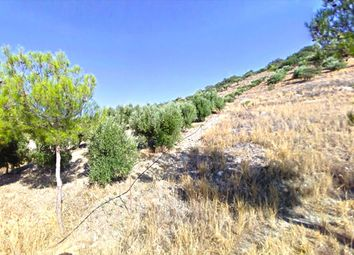 Thumbnail Land for sale in Vathy, Lasithi, Gr
