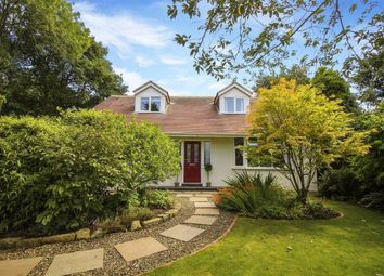 Thumbnail 4 bed bungalow for sale in Whinfell Road, Ponteland, Northumberland
