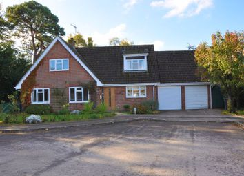 Thumbnail 4 bed detached house for sale in Durnford Close, Chilbolton, Stockbridge