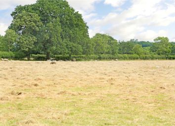 Thumbnail 5 bed detached house for sale in Common Farm, Minety, Malmesbury