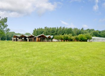 Thumbnail 4 bed bungalow for sale in Node Park, Codicote Road, Codicote, Hertfordshire